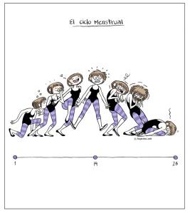 El cicle menstrual dibuixat per Alejandra Lunik
